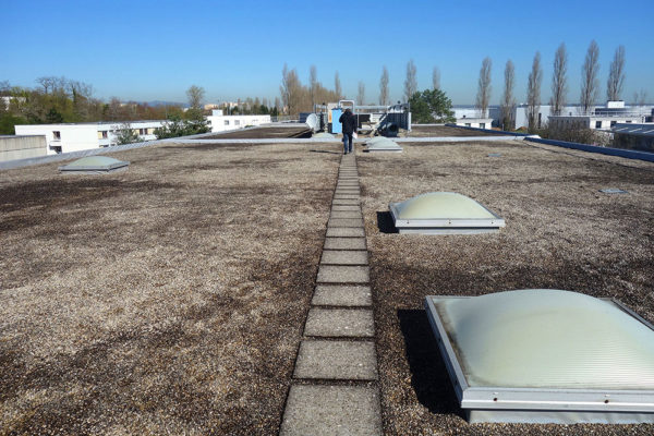 0-2-terrasse-avant-travaux