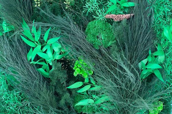 bron-vegetalisation